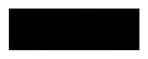 TireBrand_Logo_Blacklion